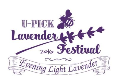 Evening Light Lavender festival shirt 2016