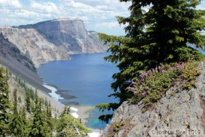 Crater Lake with tree foreground