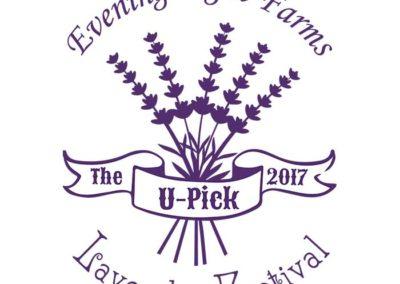 Evening Light Lavender festival shirt 2017
