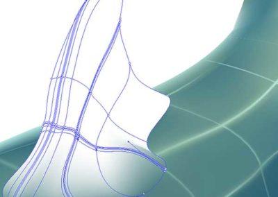 Mesh development of whale shark dorsal fin