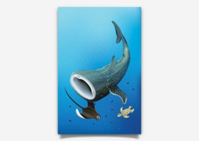 Whale Shark – Poster